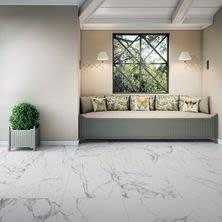 Dolphin Carpet & Tile Statuary Matt White ROSTAWHI24X48