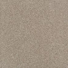 Daltile Porcealto Mandorla Con Spezia (1) Beige/Taupe CD78881P
