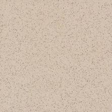 Daltile Porcealto Marrone Cannella (1) Beige/Taupe CD77881P