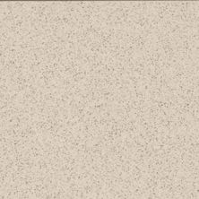 Daltile Porcealto Bianco Alpi (1) Beige/Taupe CD05881P