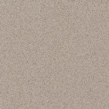 Daltile Porcealto Grigio Granite (1) Gray/Black CD40881P