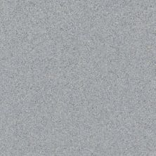 Daltile Porcealto Labradorite (1) Gray/Black CD49881P