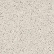Daltile Porcealto Bianco Castiglia (2) Gray/Black CD5412121L