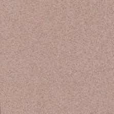 Daltile Porcealto Rosa Antico (1) Terra Cotta's CD5612121L