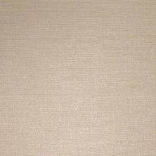 American Olean Infusion Beige FabricIF51 IF512241P1