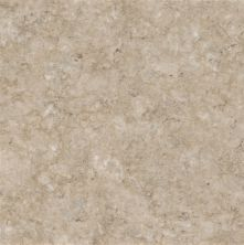 Armstrong Caliber Gothic Stone II Mineral Beige 21741051