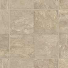 Armstrong Home Reflections Taupe 100HR401
