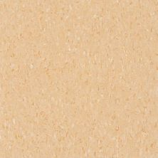 Armstrong Standard Excelon Imperial Texture Diamond 10 Tech Doeskin Peach Z1801031