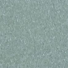 Armstrong Standard Excelon Imperial Texture Silver Green 51802031