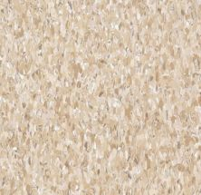 Armstrong Standard Excelon Imperial Texture Diamond 10 Tech Cottage Tan Z1830031