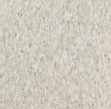 Armstrong Standard Excelon Imperial Texture Shelter White 51836021