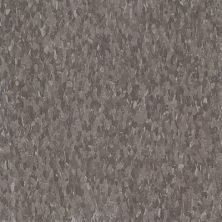 Armstrong Standard Excelon Imperial Texture Diamond 10 Tech Smokey Brown Z1868031