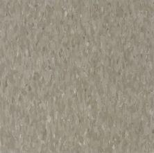 Armstrong Standard Excelon Imperial Texture Tea Garden Green 51872031