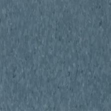 Armstrong Standard Excelon Imperial Texture Grayed Blue 51874031
