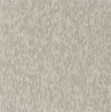 Armstrong Standard Excelon Imperial Texture Diamond 10 Tech Dusty Miller Z1883031