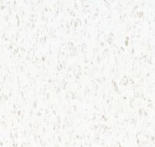 Armstrong Standard Excelon Imperial Texture Cool White 51899021