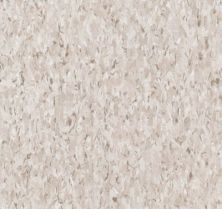 Armstrong Standard Excelon Imperial Texture Taupe 51901031