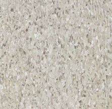Armstrong Standard Excelon Imperial Texture Diamond 10 Tech Pewter Z1908031