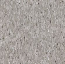 Armstrong Standard Excelon Imperial Texture Diamond 10 Tech Field Gray Z1927031