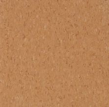 Armstrong Standard Excelon Imperial Texture Diamond 10 Tech Curried Caramel Z1942031