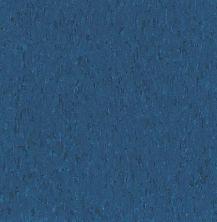 Armstrong Standard Excelon Imperial Texture Diamond 10 Tech Gentian Blue Z1946031