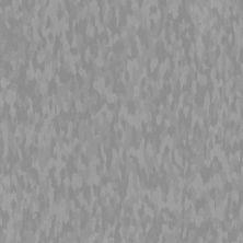 Armstrong Excelon Sdt Ridge 51957031
