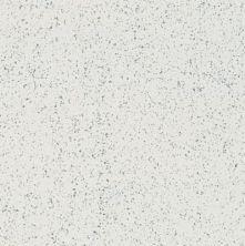 Armstrong Premium Excelon Stonetex Stone White 52127031
