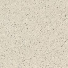 Armstrong Premium Excelon Stonetex Desert Dust 52128031