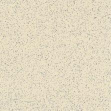 Armstrong Premium Excelon Stonetex Limestone Beige 52139031