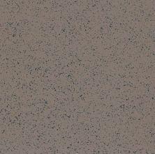 Armstrong Premium Excelon Stonetex Pumice Stone 52147031