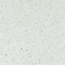 Armstrong Premium Excelon Chromaspin Zinc Oxide 54800031