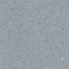 Armstrong Premium Excelon Chromaspin Mezzotint 54806031