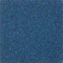 Armstrong Premium Excelon Chromaspin Windsor Blue 54826031