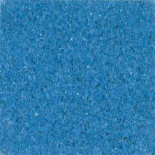 Armstrong Premium Excelon Chromaspin Cerulean 54827031