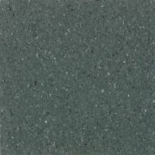 Armstrong Premium Excelon Chromaspin Shadow Green 54829031