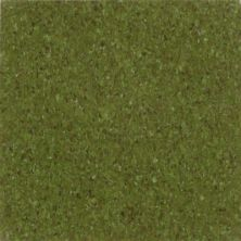 Armstrong Premium Excelon Chromaspin Olive 54831031