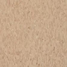 Armstrong Standard Excelon Imperial Texture Diamond 10 Tech Nougat Z7501031