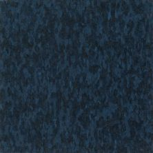 Armstrong Standard Excelon Imperial Texture Go Blue 57531031