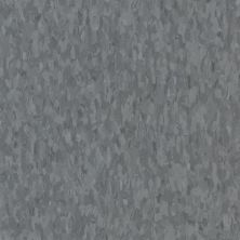 Armstrong Standard Excelon Imperial Texture Grayson 57532031