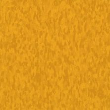 Armstrong Standard Excelon Imperial Texture Sun Gold 57536031