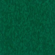 Armstrong Standard Excelon Imperial Texture Alligator 57537031