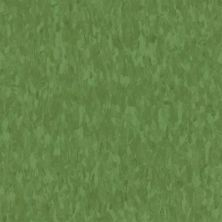 Armstrong Standard Excelon Imperial Texture Lime Zest 57546031