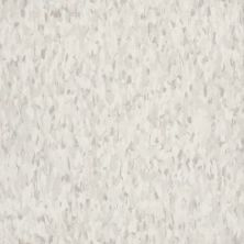 Armstrong Standard Excelon Imperial Texture Diamond 10 Tech Silk Z9234031