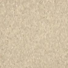 Armstrong Standard Excelon Imperial Texture Impasto 59235031
