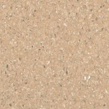 Armstrong Accolade Plus Capricorn Beige 5A073271