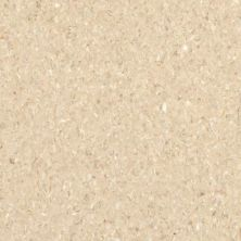 Armstrong Accolade Plus Sand Bond 5A074271