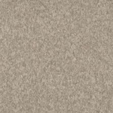 Armstrong Premium Excelon Crown Texture Linseed 5C236031