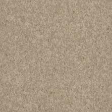 Armstrong Premium Excelon Crown Texture Safari Tan 5C238031