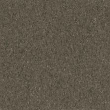 Armstrong Premium Excelon Crown Texture Taragon 5C239031