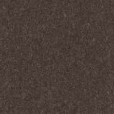 Armstrong Premium Excelon Crown Texture Carob 5C242031